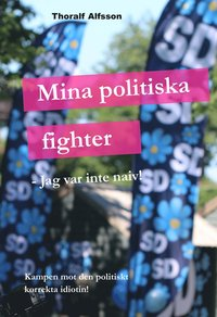 Mina politiska fighter